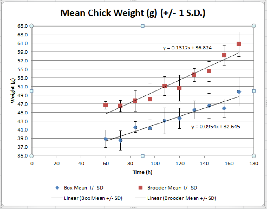 Figure 4. Growth rate is higher in chicks (n=3) placed in brooders post-hatch compared to delayed placement.