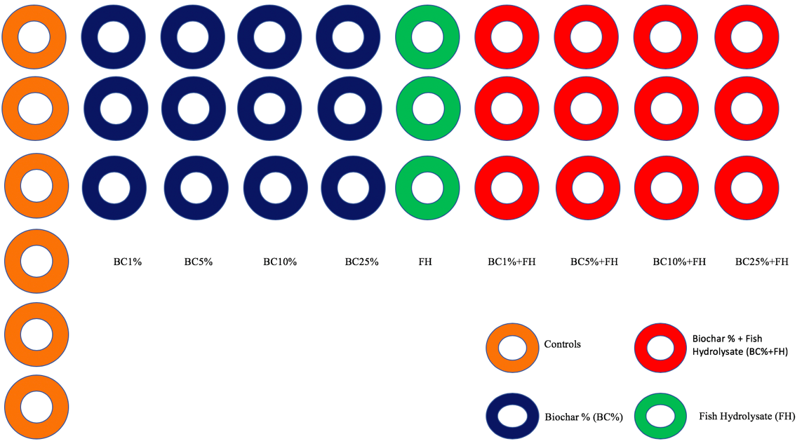 Figure 1. Schematic of 33 pots divided into 10 groups used in the experiment.