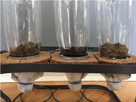 Figure 1. Filter setup; sand, dried banana peels, sand (left to right).