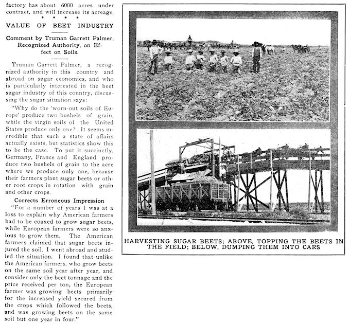 SA Register, 1913 - Sugar Beets 3.jpg