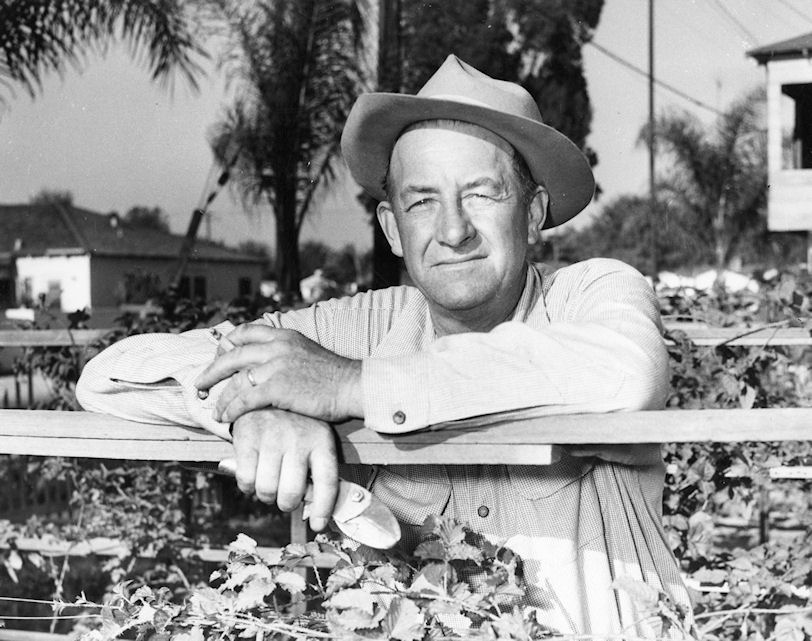 Rudy Boysen, namesake of the Boysenberry, 1948 (courtesy UC Irvine Special Collections).