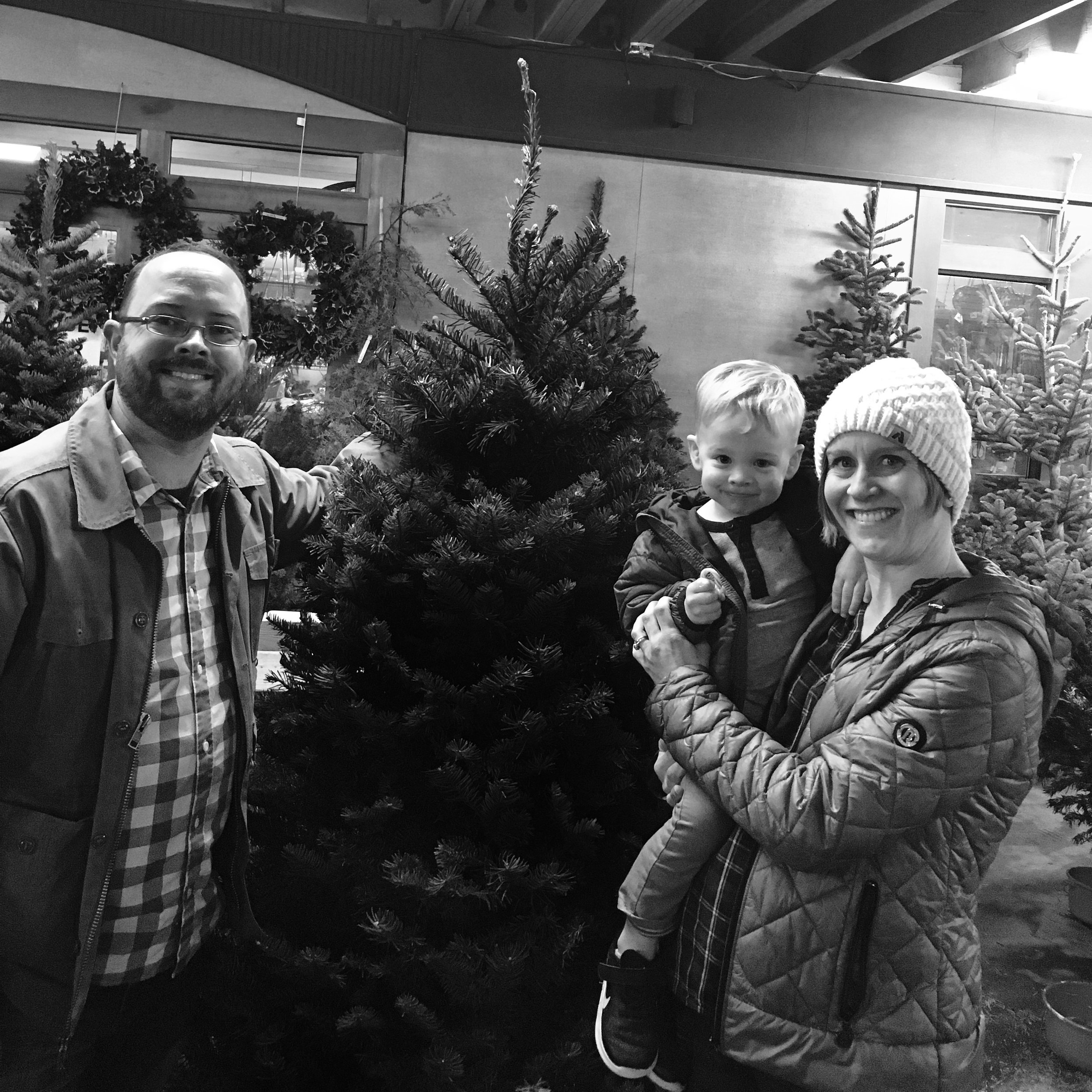 Picking our Tree at GardenSphere