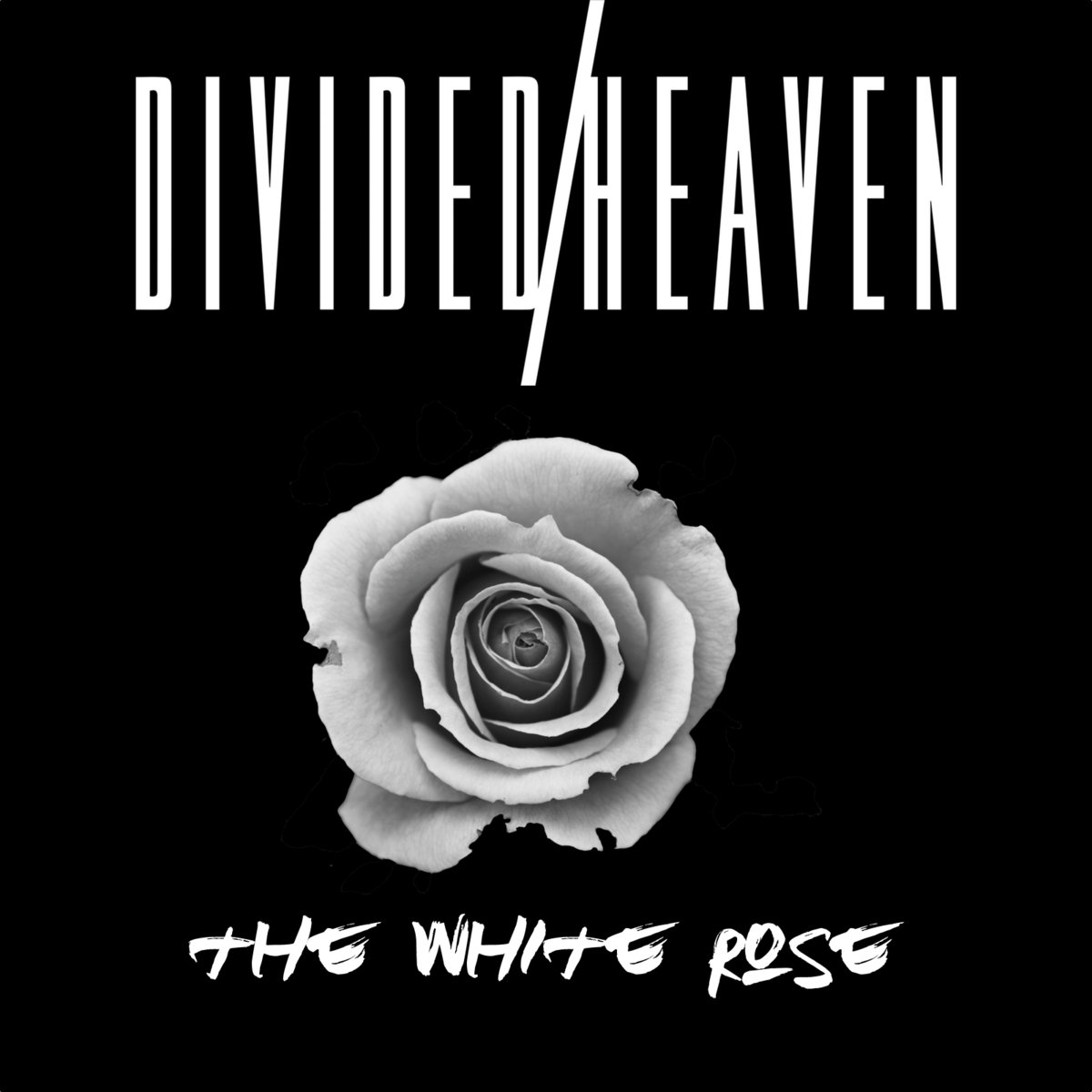 THE WHITE ROSE - Released July 20th, 2017This Is LA Records
