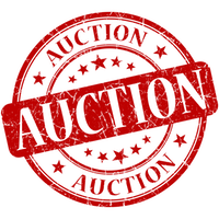 auction-0200x0200-rounded.png