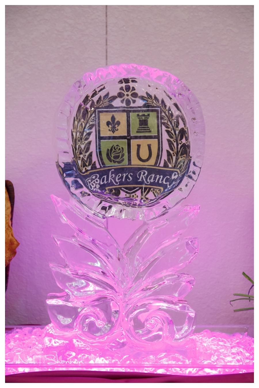 Wedding Ice Sculpture | Rustic, Elegant Sarasota Wedding Venue | Bakers Ranch