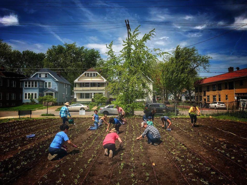 Praxis Fiber Workshop - Fiber Workshop and Urban Indigo GardenCleveland, OH
