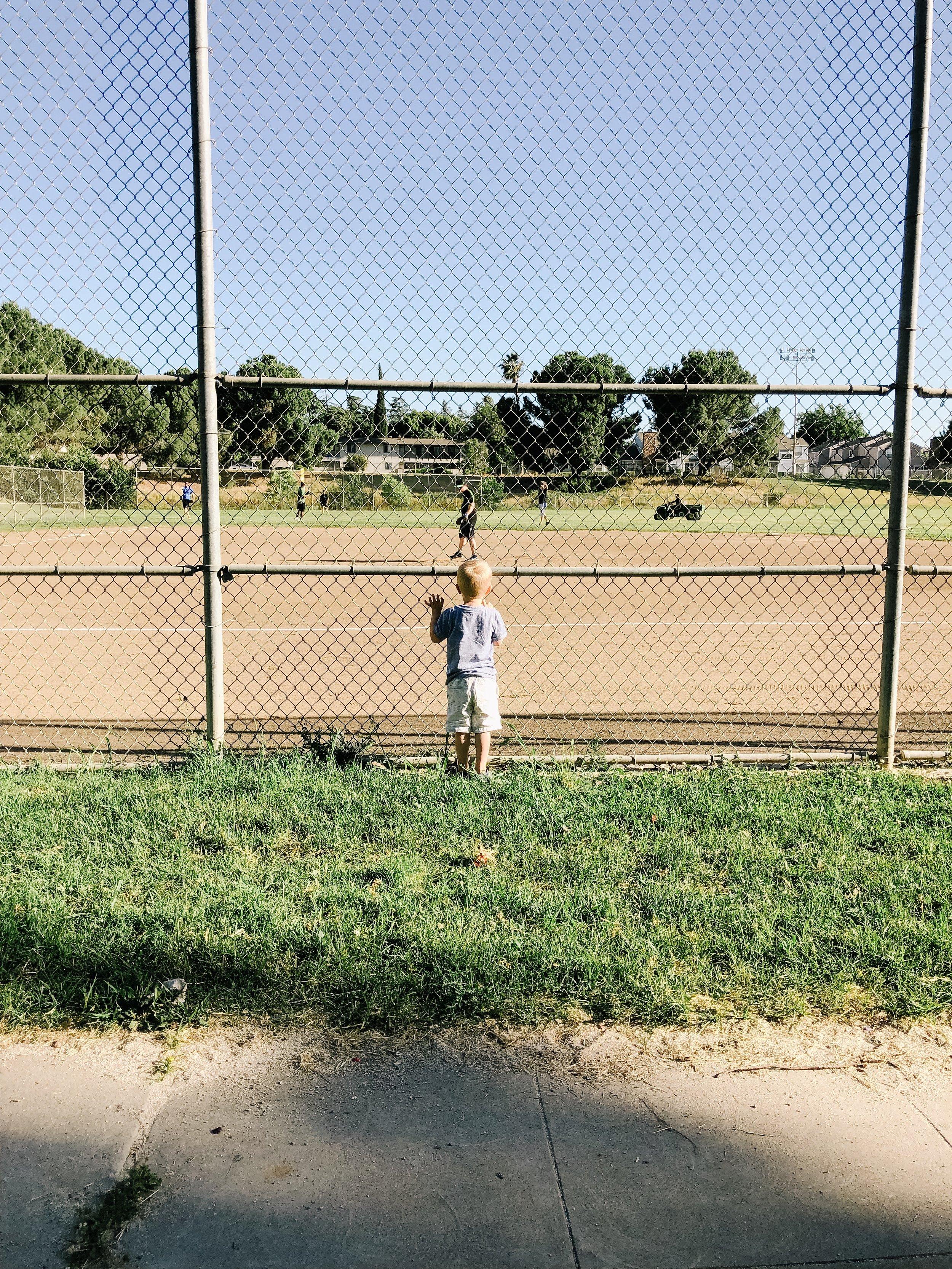 Boy watching baseball