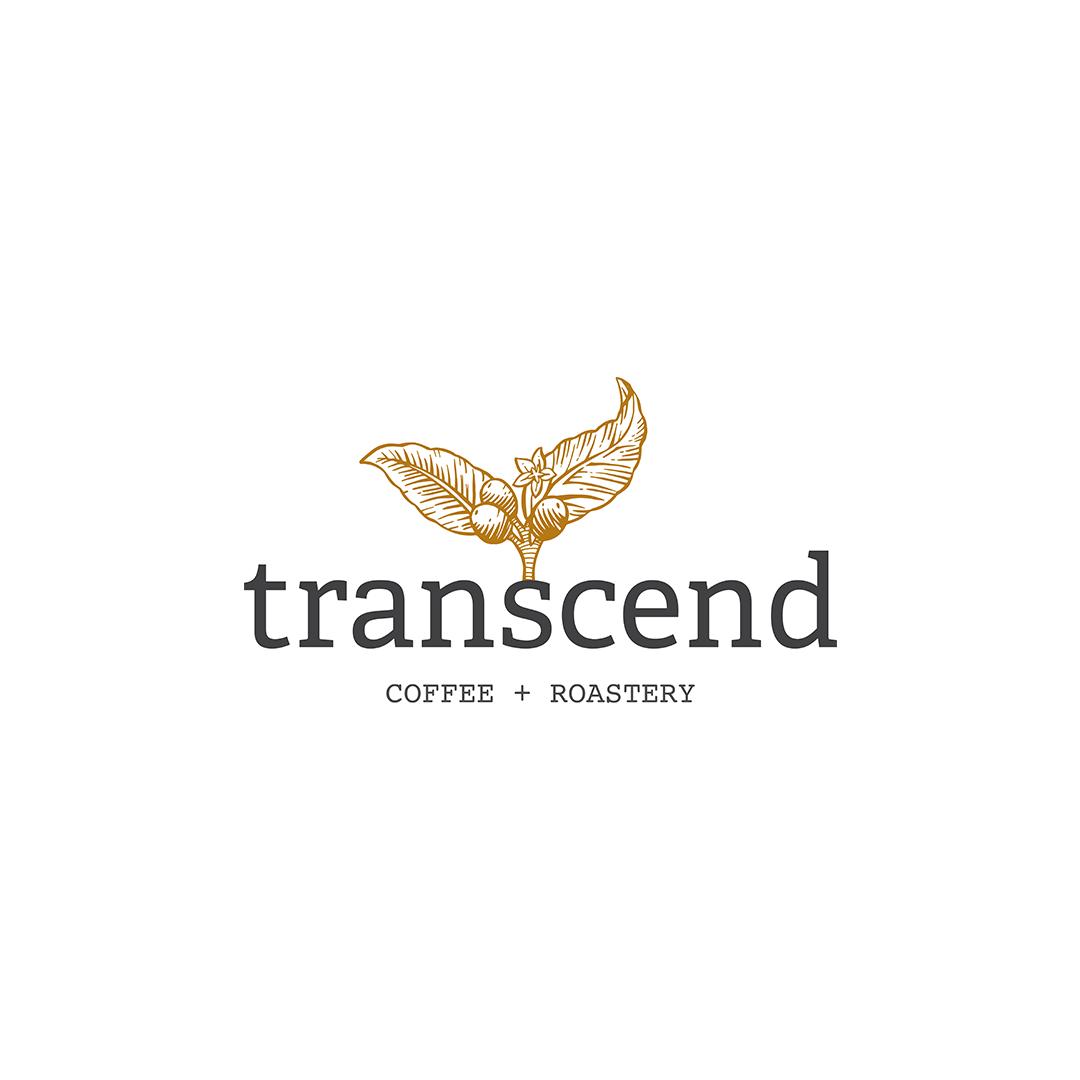 transcend 1.png