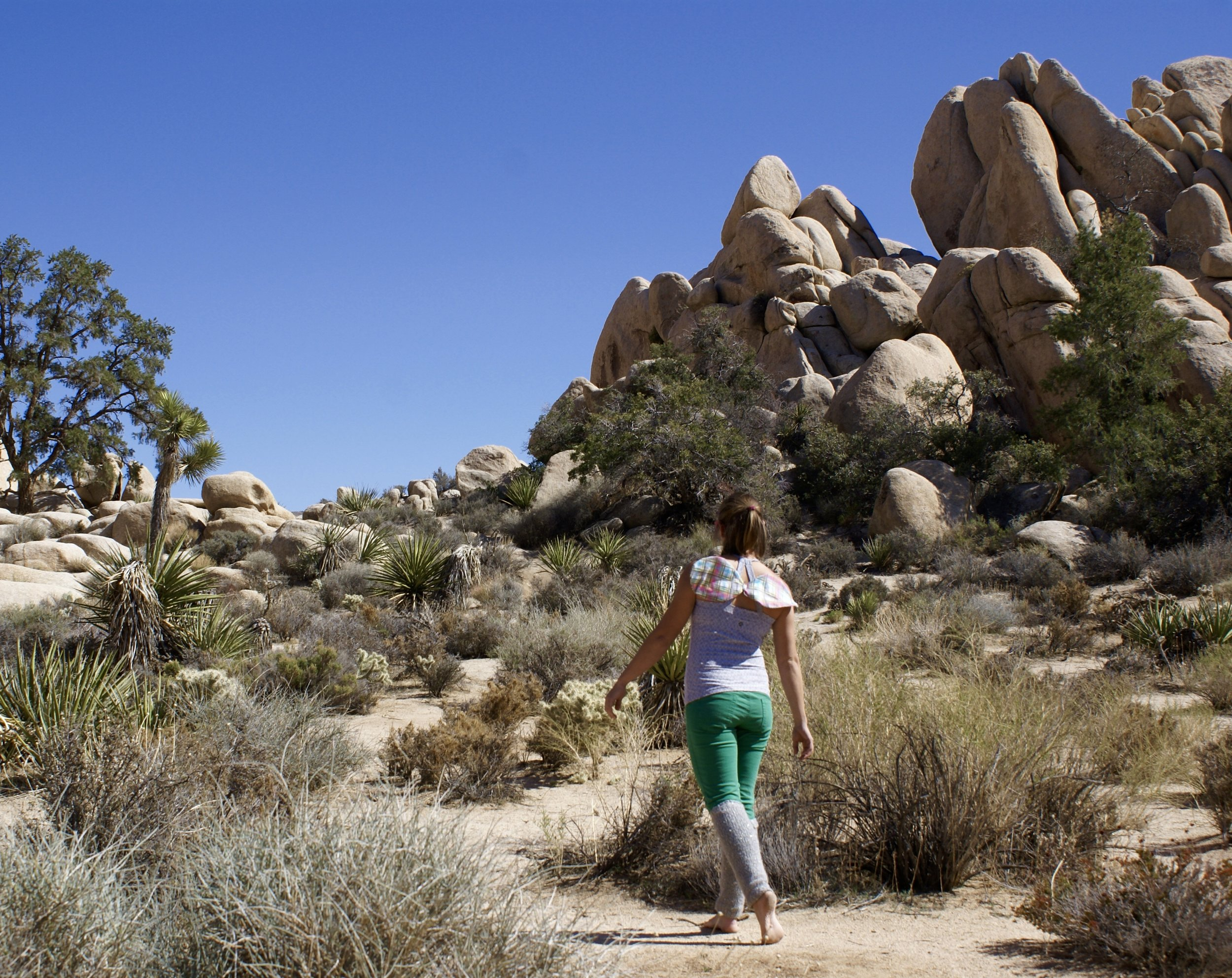 traveling love fairy hikes in joshua tree desert