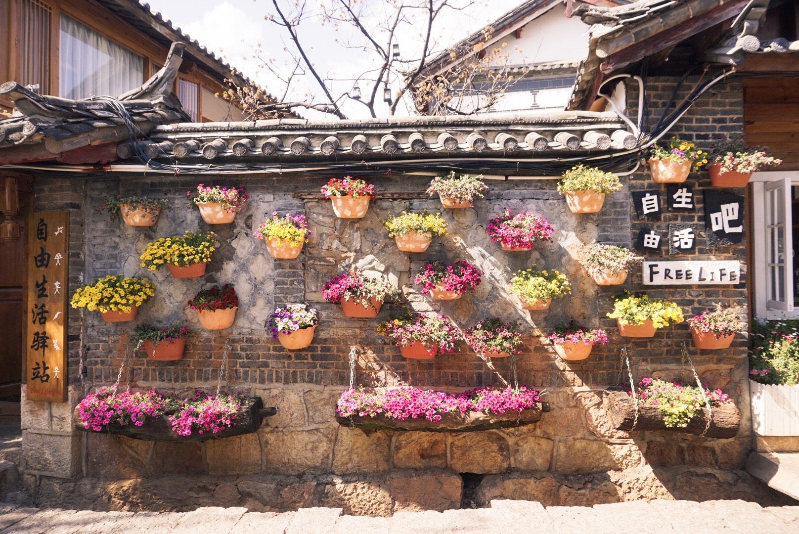 CocoGigiDesign -China-Lijiang 2018_4387.JPG