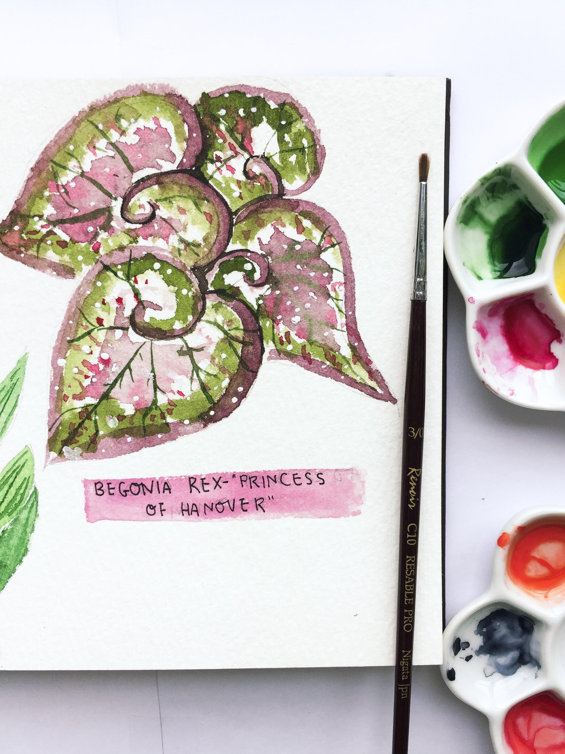 Gina Maldonado-Outdoor Sketching_5785.jpg
