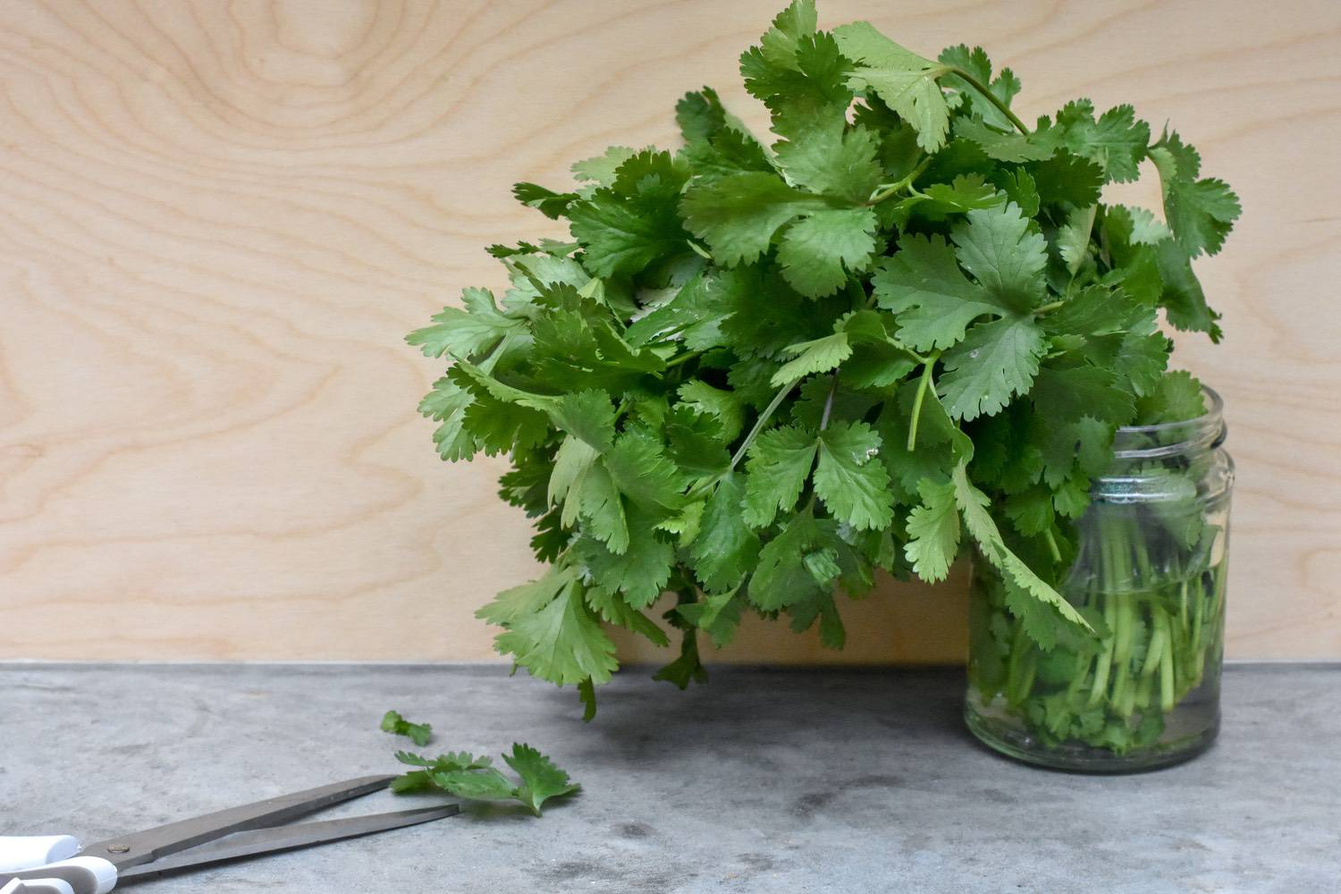 fresh herbs - Herbs were definitely one of my bad kitchen habits. I bought them often. Then they would vanish into the black hole of the fridge, only to be found rotting in their plastic bag weeks later.These days I buy them bunched and unpackaged and store them in a jar of water in the fridge door. This keeps them fresh AND visible.You'll find them loose in lots of places - greengrocers (often out the back - ask), street-markets, big Sainsbury's. Even my local corner shop has bunches. Just not as part of an online shop.In the summer, it's worth buying potted basil, as it will last for ages (winter ones are grown hydroponically so will die too quickly in your kitchen).