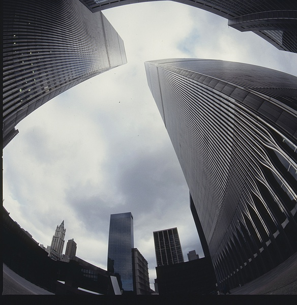 World Trade Fisheye