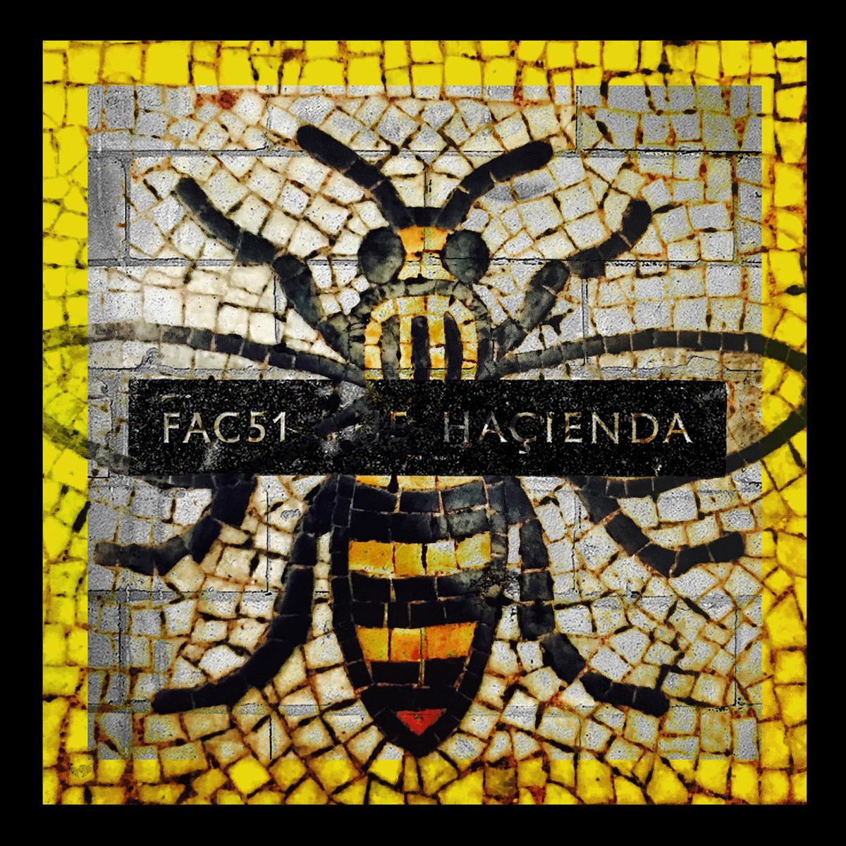 Hacienda Bee History