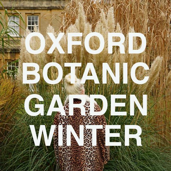 TEST OXFORD WINTER.jpg