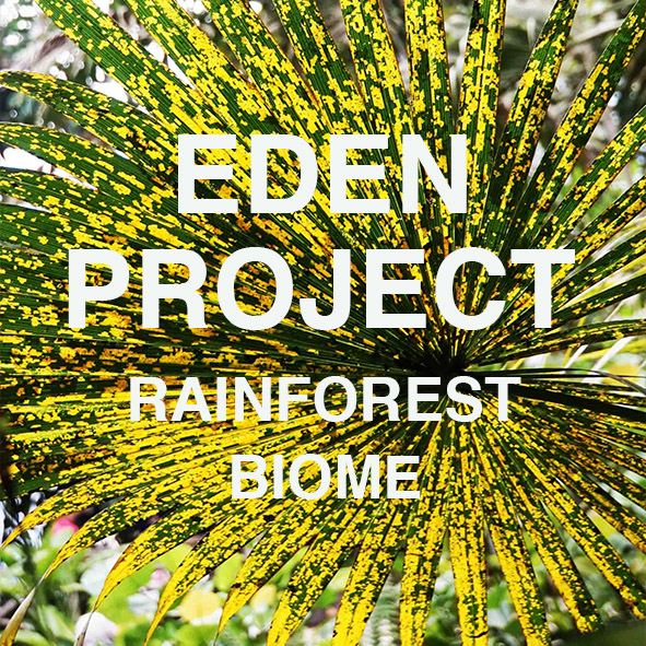 Eden Project RB COVER.jpg