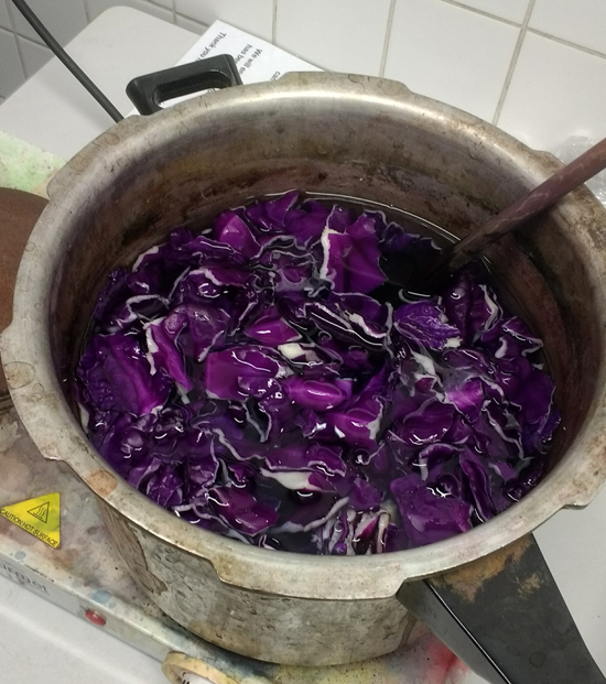 Cabbage Dyeing