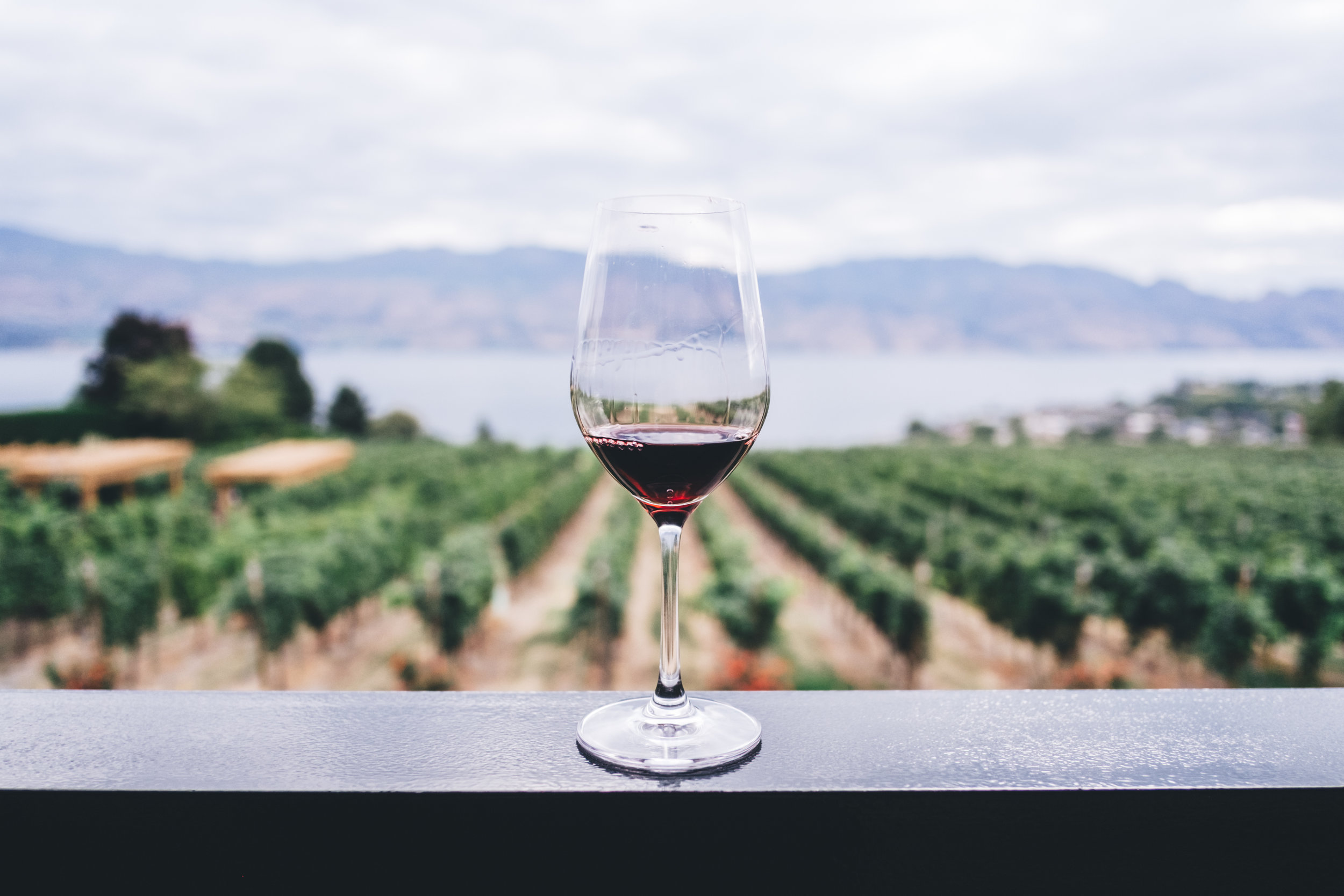 Okanagan wines - Currently working on driving online sales for three wineries in the Okanagan region: Mount Boucherie, Winemakers CUT & Ricco Bambino. Stay tuned for updates.