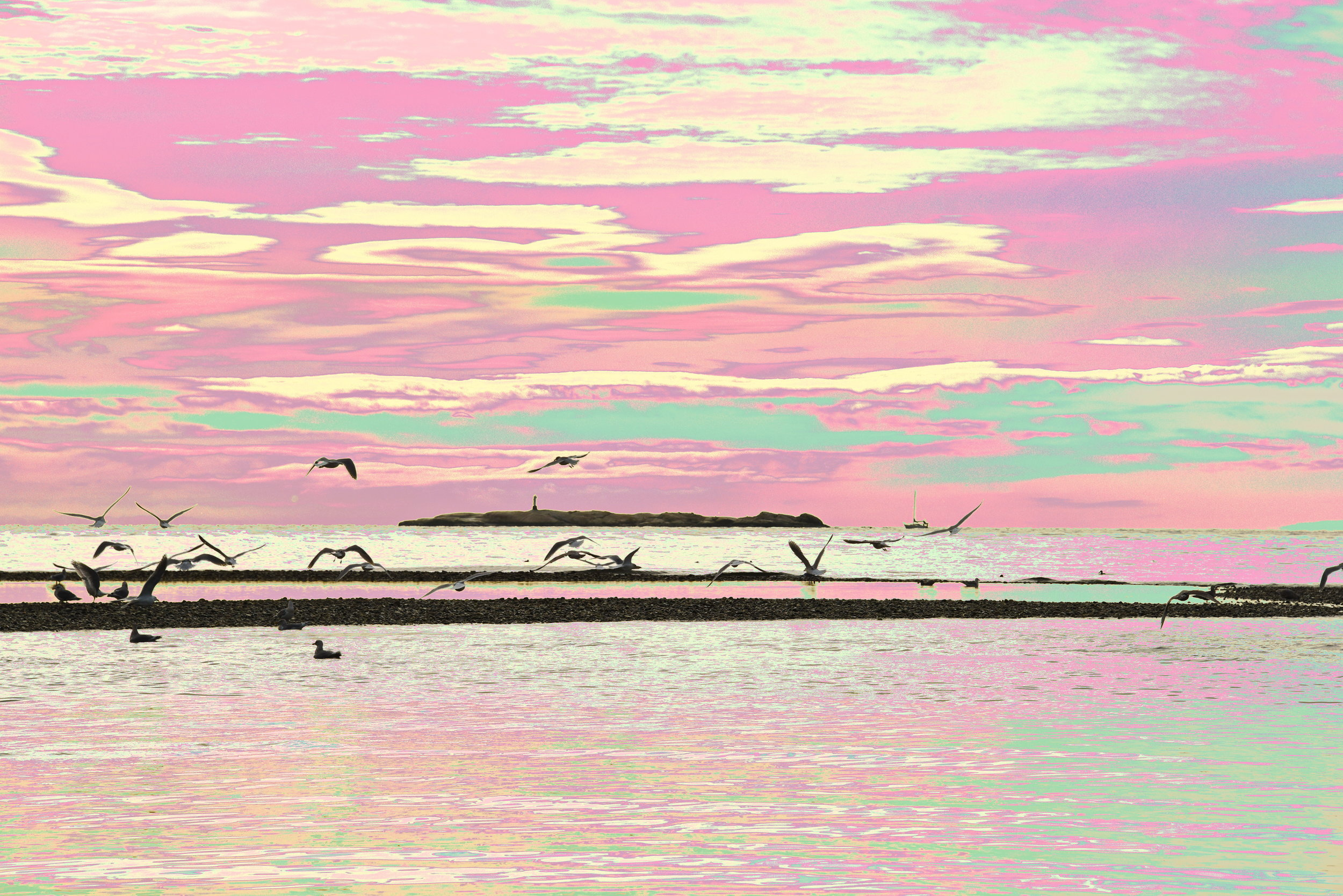 Davis Bay Morning 2    16 x 24 Canvas 225.00 16 x 24 HD Metal 300.00 12 x 18 HD Metal 200.00    also available in 5 x 7 Art Card