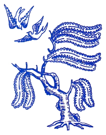 Blue Willow Logo - Transparent.png