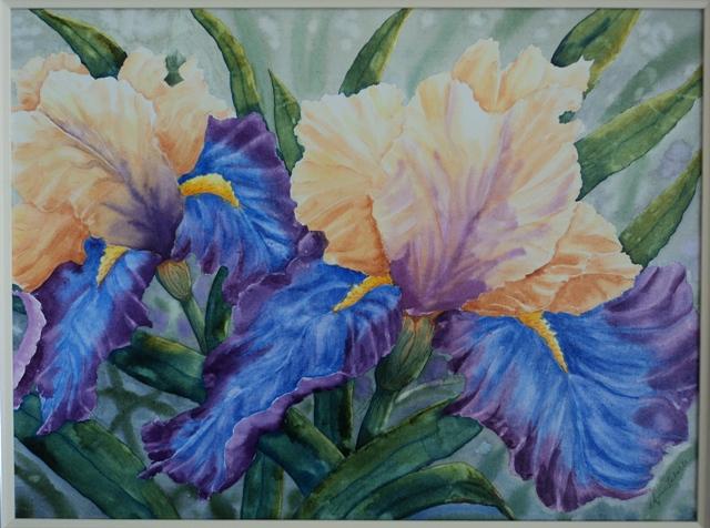 Cream & Blue Iris