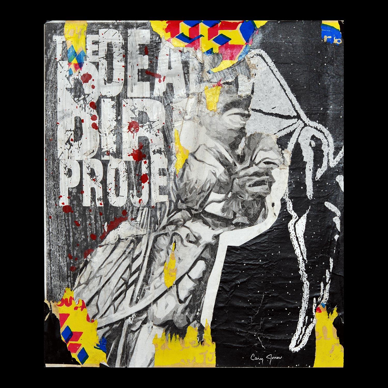 "Dead Bird Project: Austin - South Austin - 20.5"" x 18"""