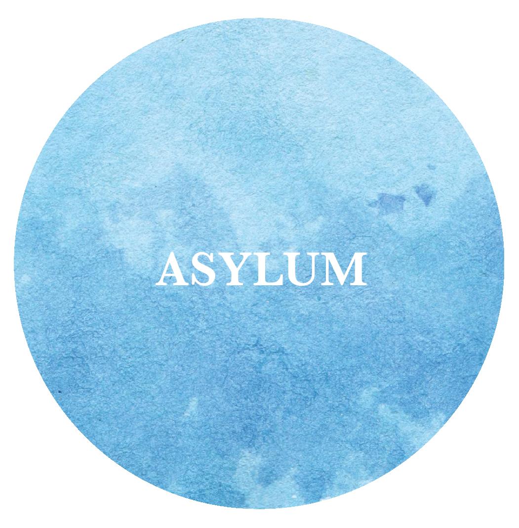 eng_asylum.png
