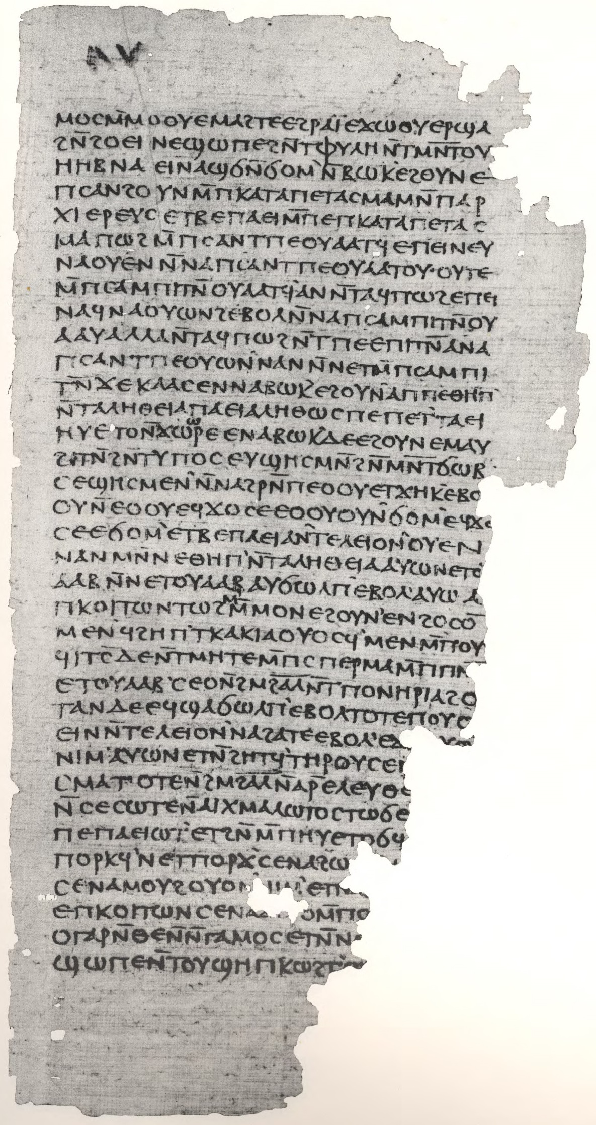 Gospel_of_Philip_facsimile_Page_85.jpg