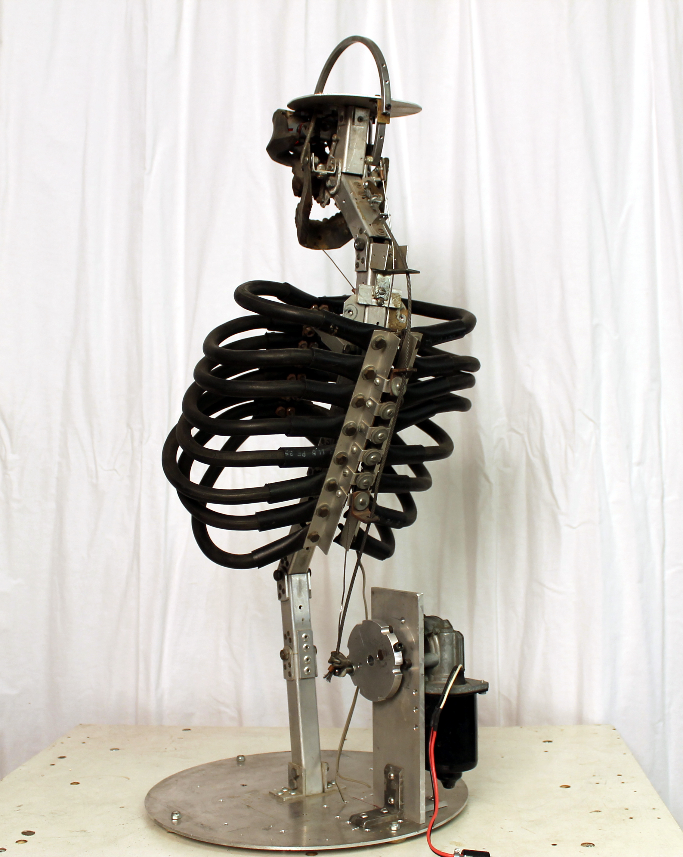 Mechanical Thrashing Torso (Rear View)