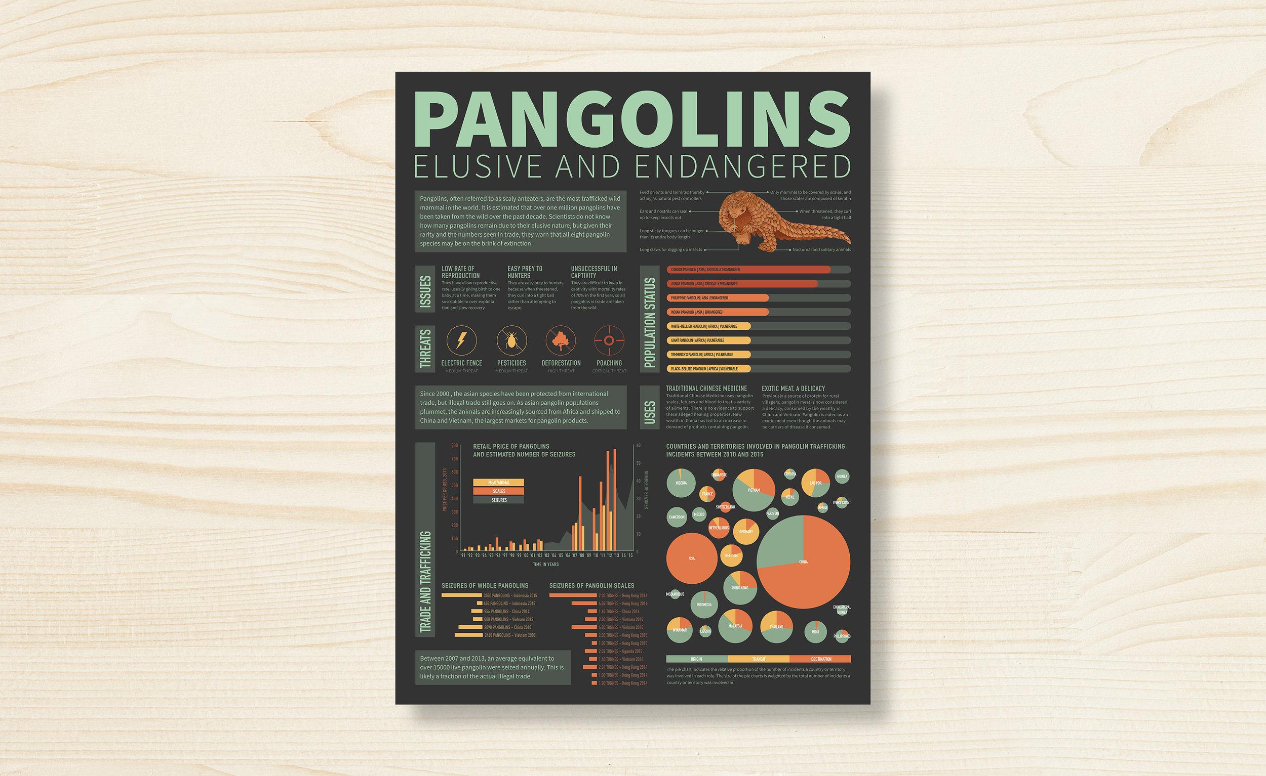pangolins_home2.jpg