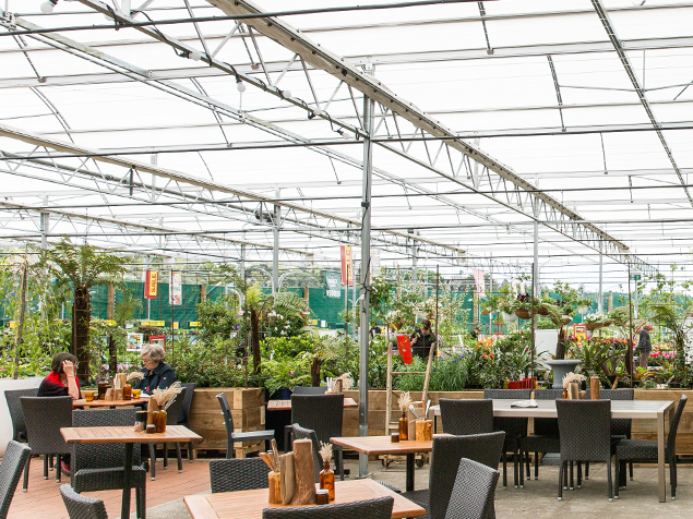 Kings Garden Cafe in Orakei features a beautiful setting in Kings Plant Barn and offers balanced food made fresh in-house every day.