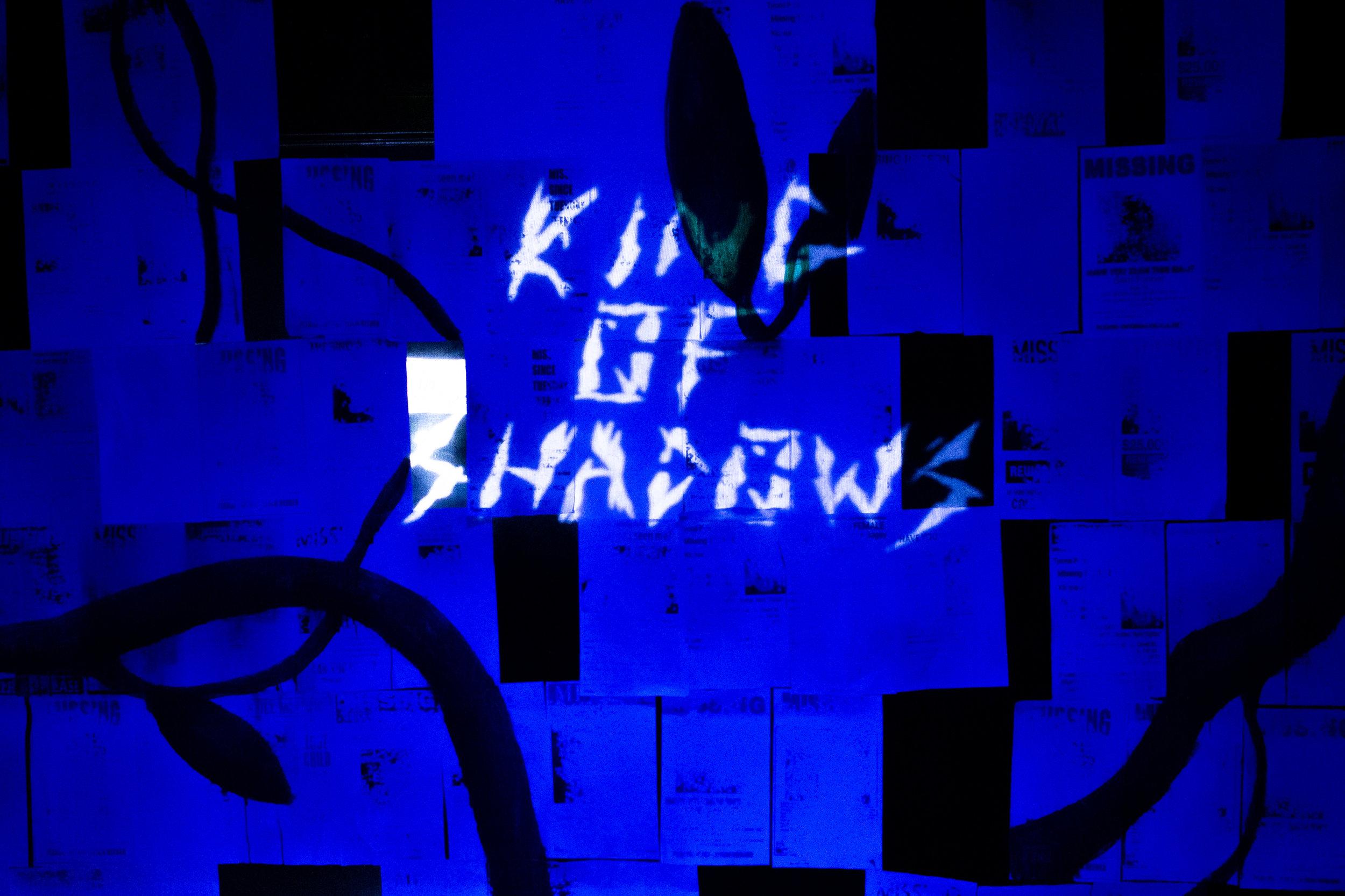 King of Shadows (2019)