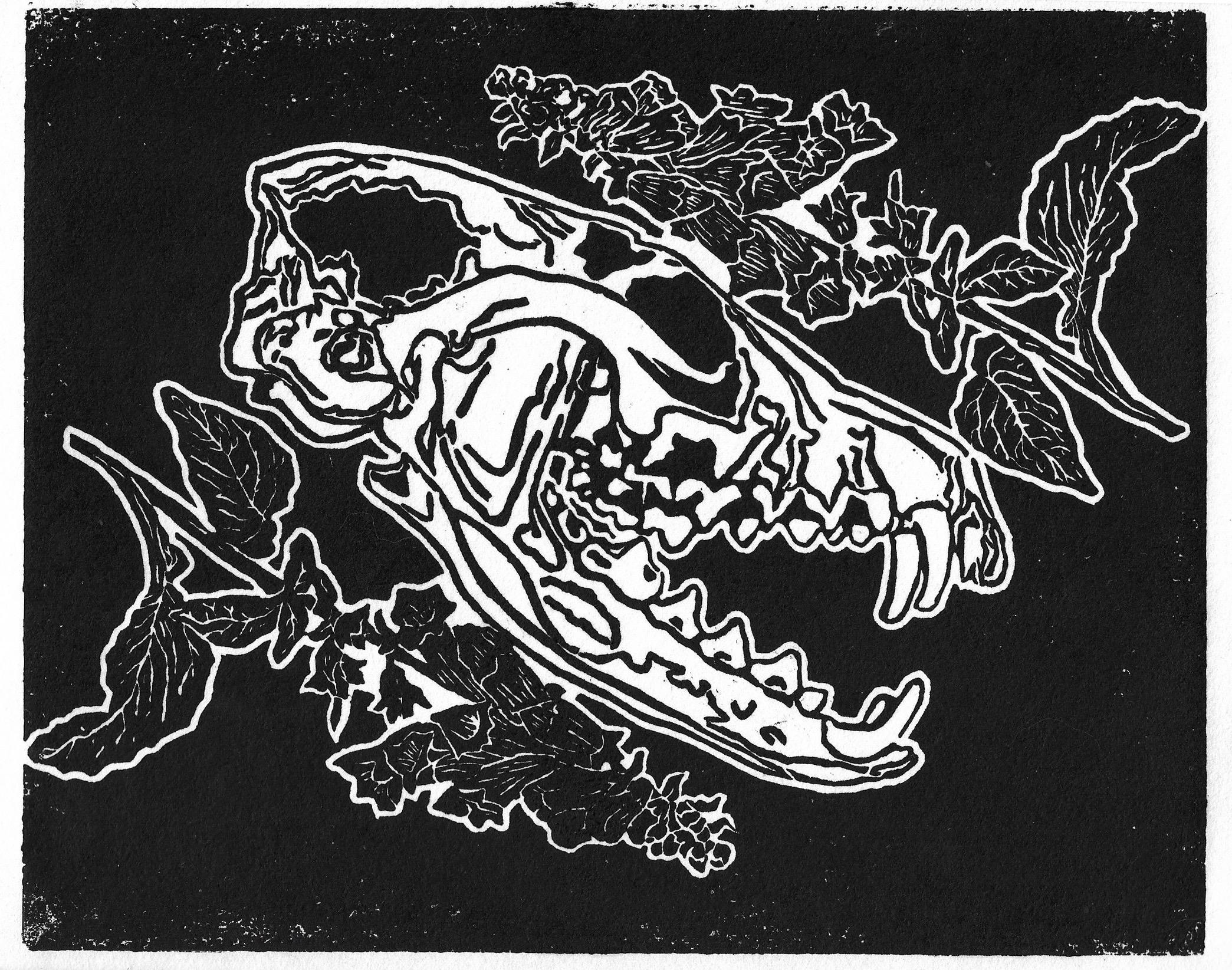 Fox Skull & Foxglove
