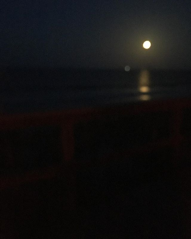 Took these this week. Night view of the beach. (The sinister lighting is for turtle nesting.)
