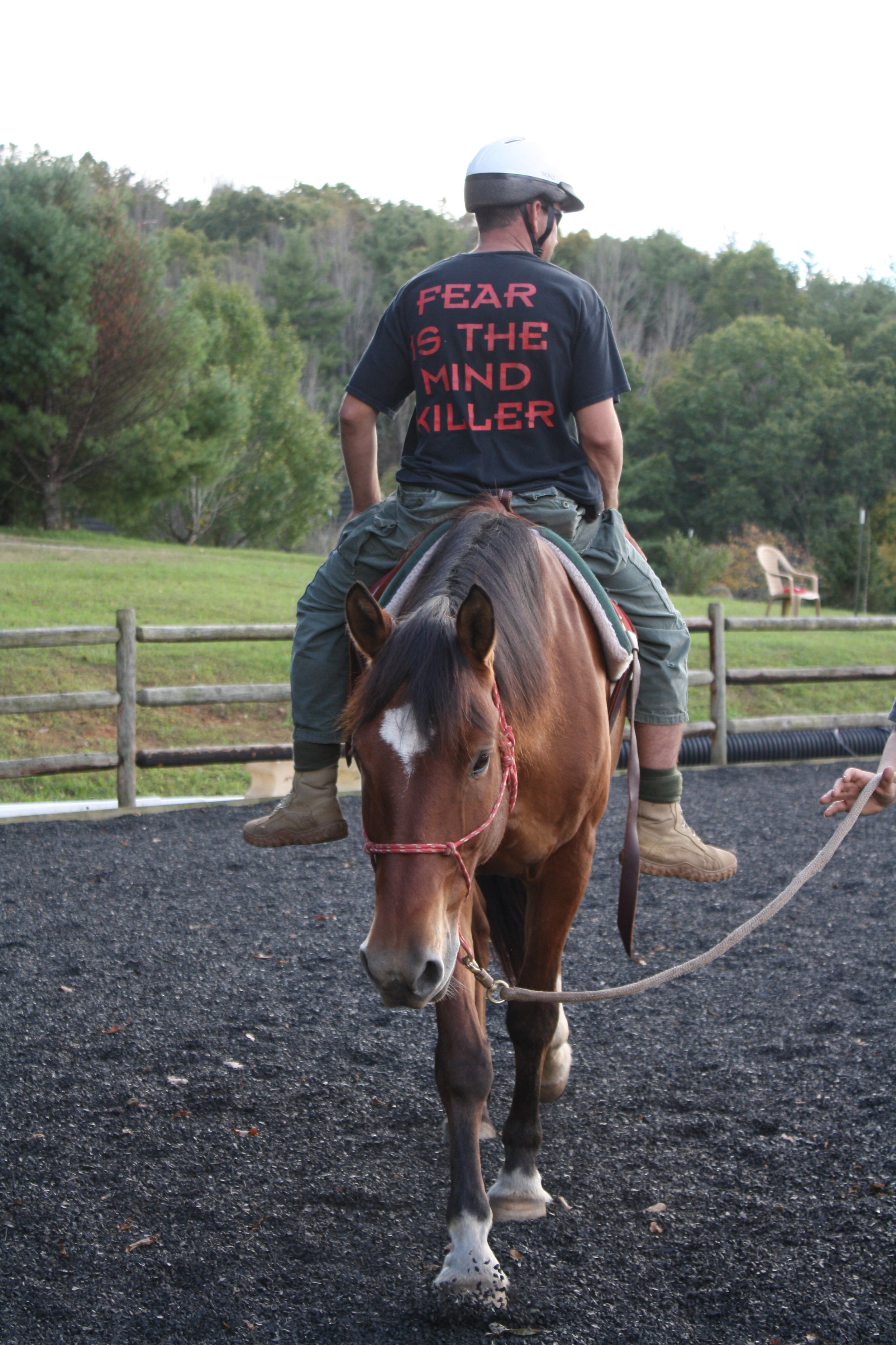 Vet Mounted 1.JPG