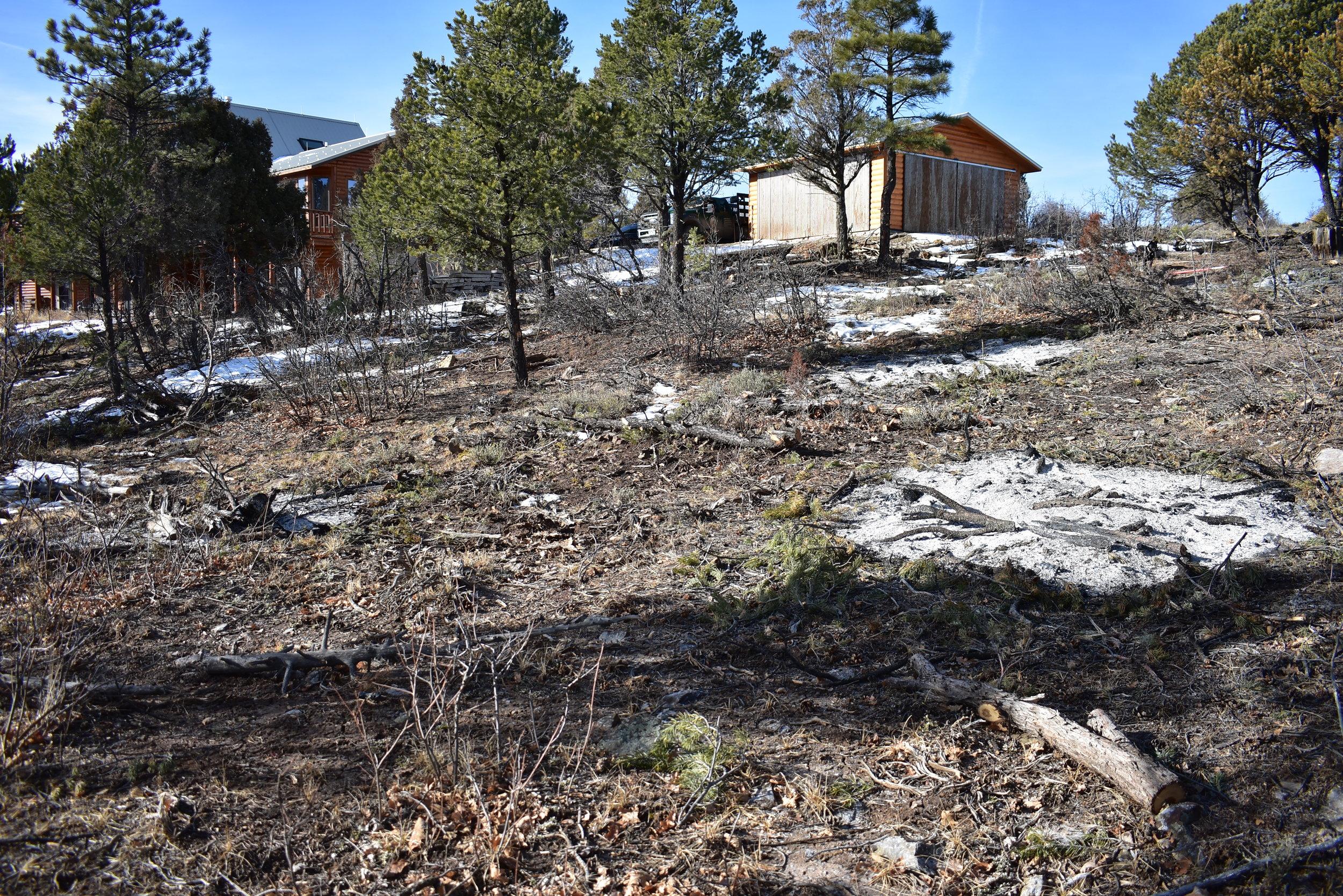 Wildfire Mitigation.JPG