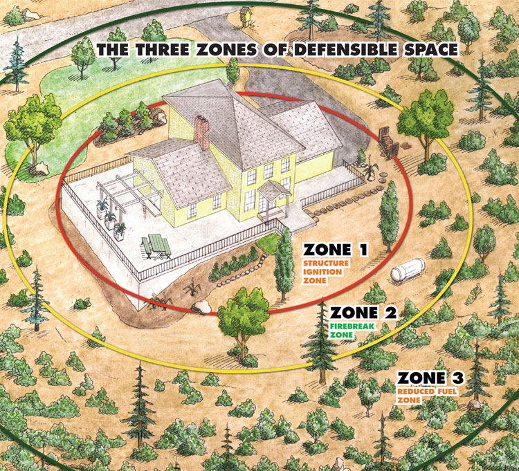 Defensible Space.jpg