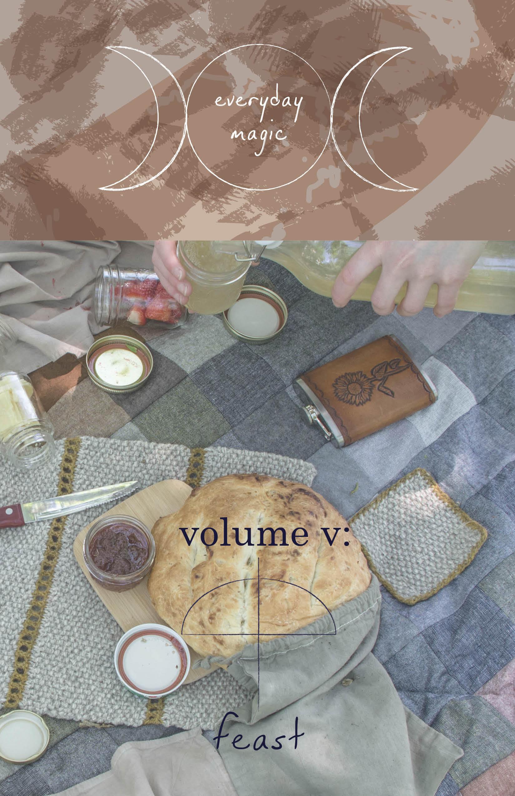 volume v cover.jpg