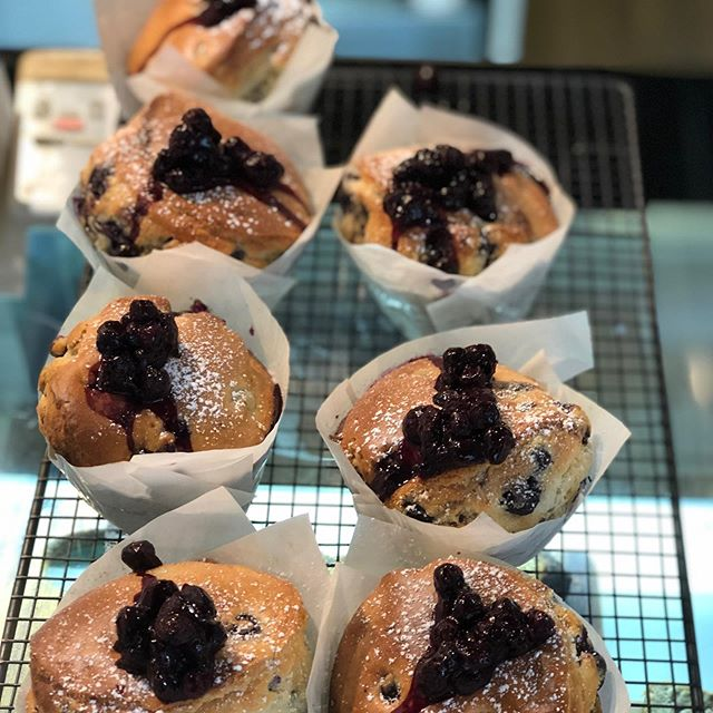 Fresh blueberry muffins Straight out the oven 😍😍 #no.5cafe #fortitudevalley #winnlane