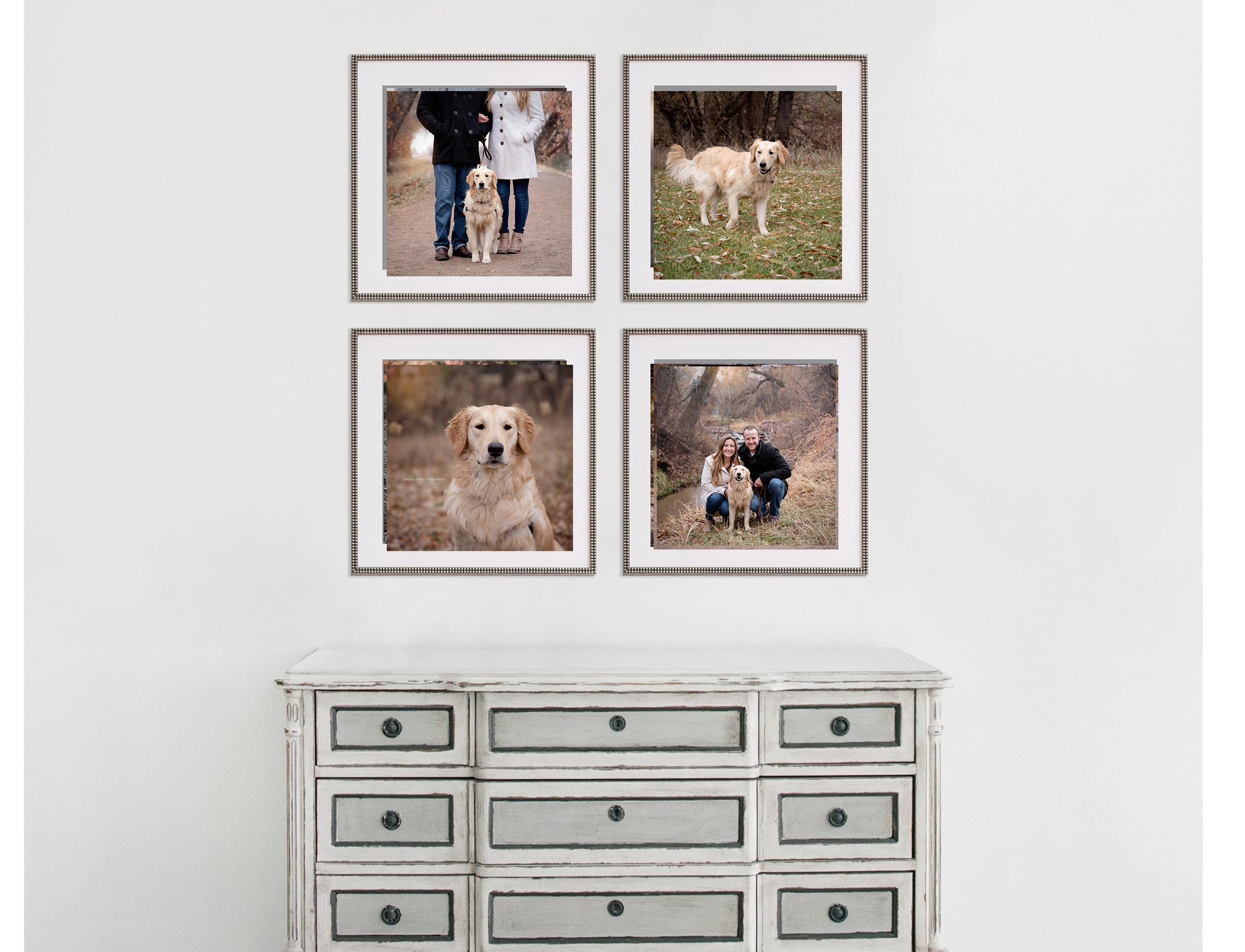 A gallery wall collection can tell the story of your dog