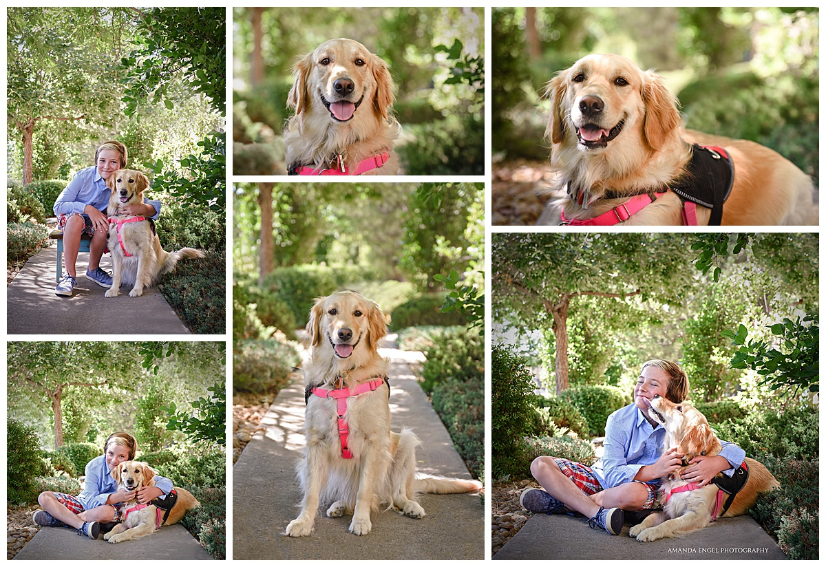 Englewood Denver Dog Photography.jpg