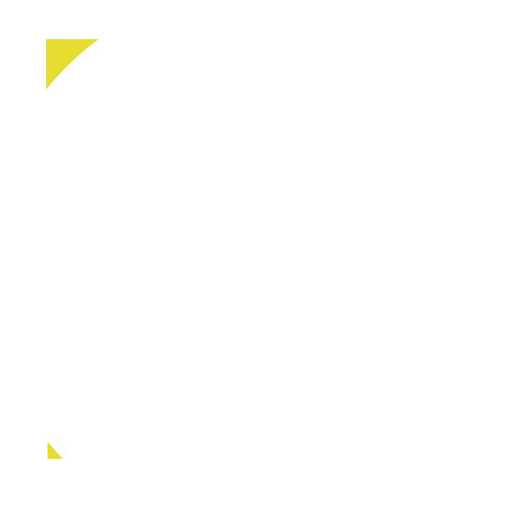 Bella Dame Lash Lincoln City