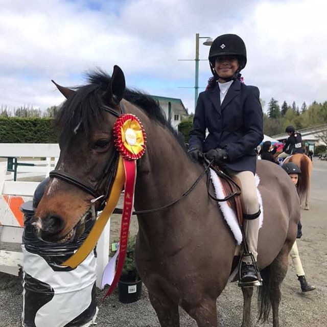 Equitation day was a success! In the SS Horse Eq, Melissa was Champion & Nina took the Res Ch! Lily took Res Ch in the SS Pony Eq and Caitlin was Res Ch in the Low AAs. Sarah & Guin put in very solid rounds in the LS Eq. Looking forward to the weekend! Let's hope for some more Monroe sunshine ☀️