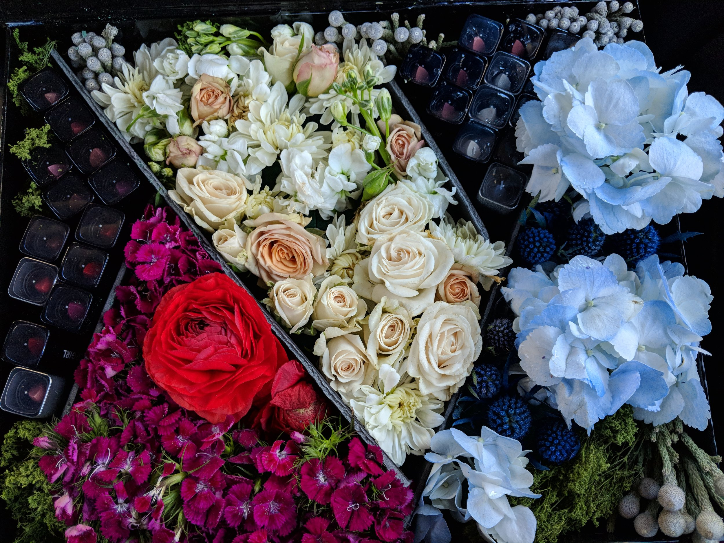Covergirl Editor Flower Boxes