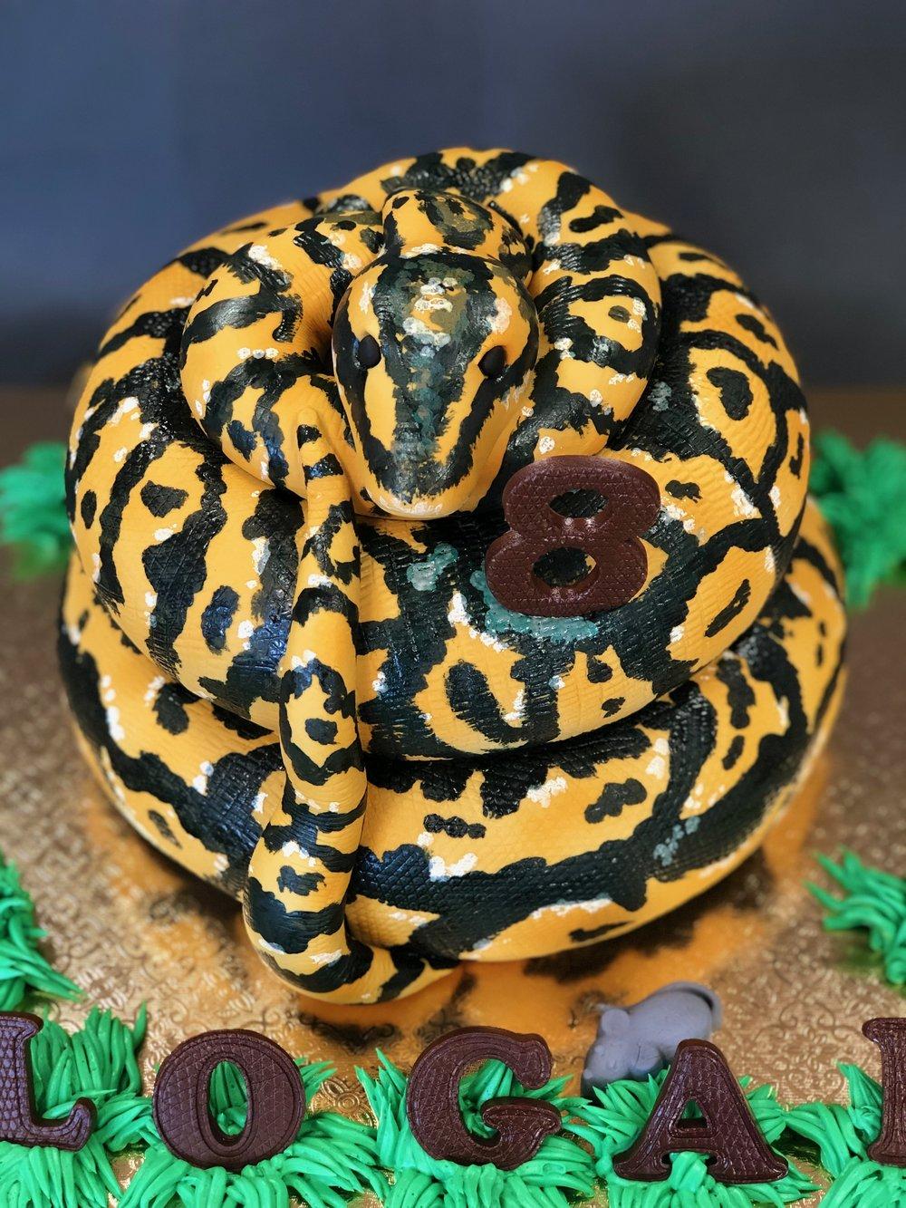 3D Boa Python Birthday Cake NJ