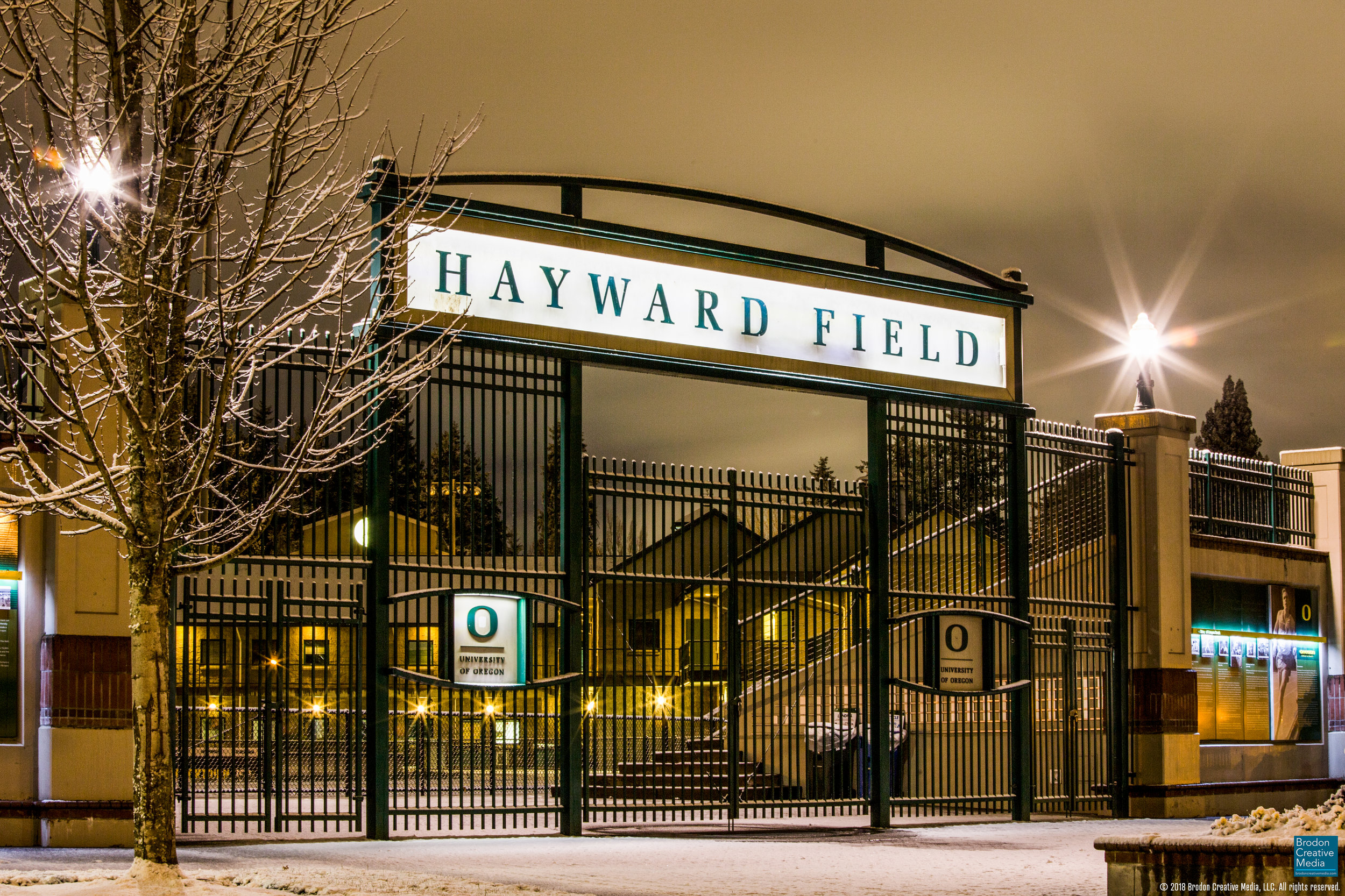 Hayward snowy, bright, sharp, BCM Logo - IMG_0420.jpg