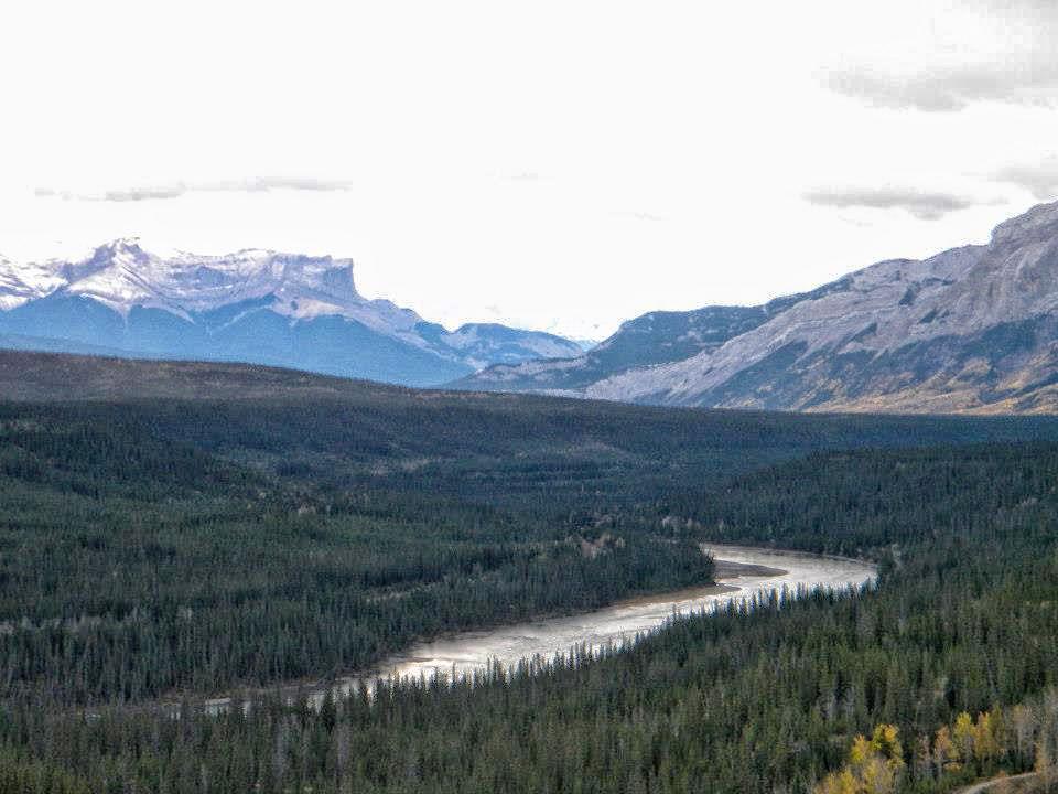 Athabasca River & Roche Miette