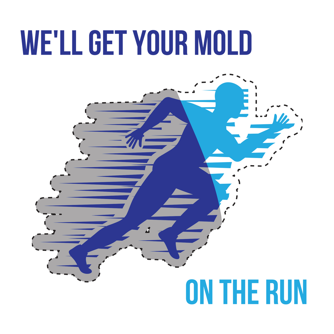mold run web.png