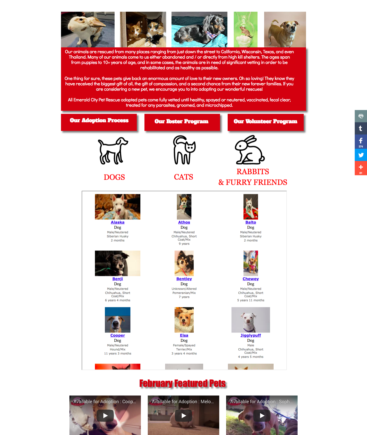 screencapture-emeraldcitypetrescue-org-available-pets-html-2018-03-16-13_42_33.png