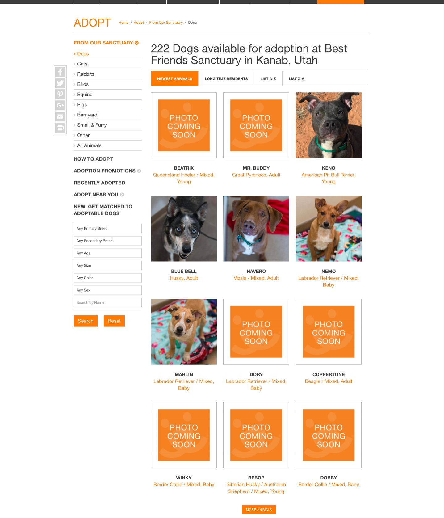 screencapture-bestfriends-org-adopt-adopt-our-sanctuary-dogs-2018-03-16-13_41_51.png